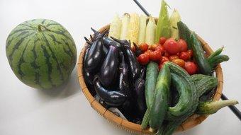 6月の野菜画像